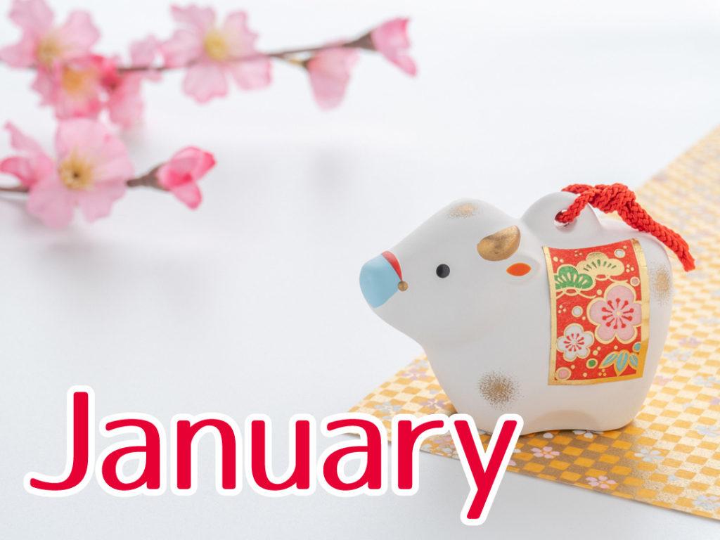 1月のキャンペーン