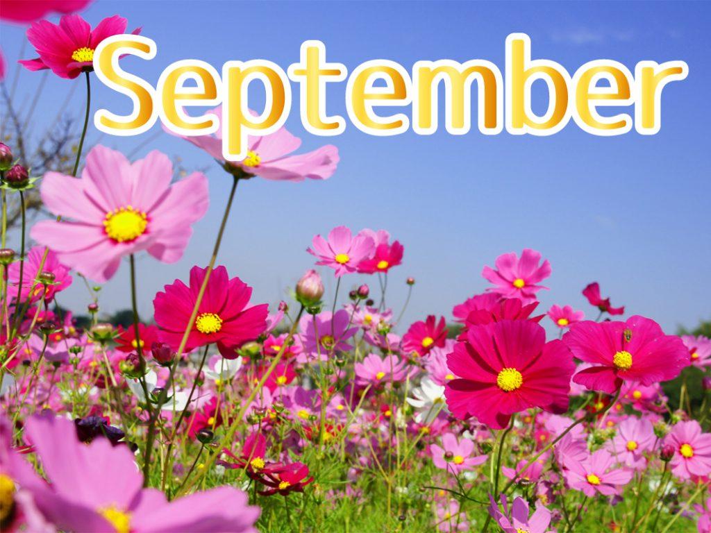 9月のキャンペーン
